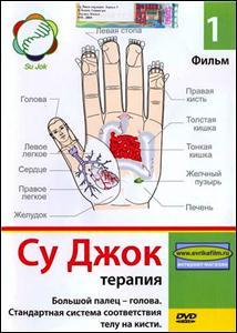 Су Джок терапия. Большой палец - голова. Стандартная система соответствия телу на кисти