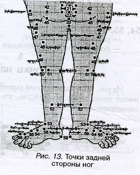 Точки задней стороны ног