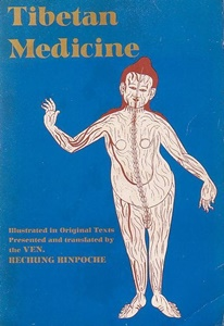 Tibetan Medicine: Illustrated in Original Texts